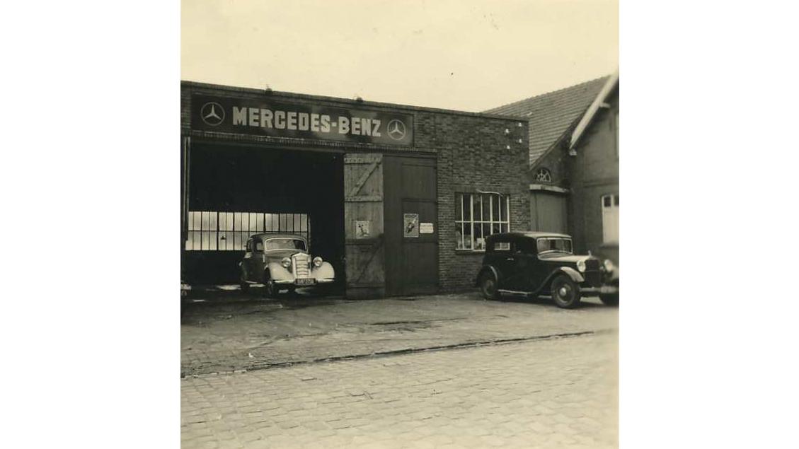 Knauer & Liebau 1951