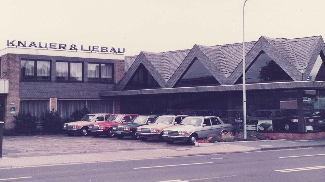 Knauer & Liebau 1980